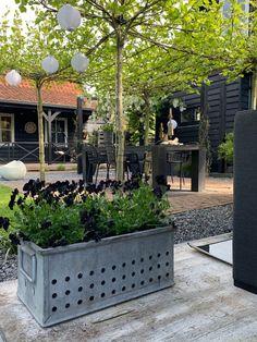 Inspiratie: tuinen in industriële stijl - Alles om van je huis je Thuis te maken | HomeDeco.nl Backyard Privacy, Backyard Patio, Backyard Landscaping, Garden Deco, Backyard Lighting, Outdoor Living, Outdoor Decor, Back Patio, Go Outside