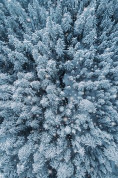 This is why I love winter by Nick Verbelchuk - Photo 239493727 / 500px