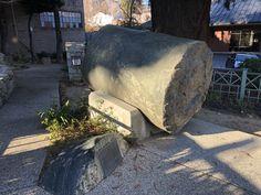 Nevada City, Geology, California, Wood, Petrified Wood, Woodwind Instrument, Trees, Home Decor Trees, Woods