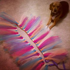 Fluffy Runner's Tutu a No-Sew Tutorial – Round to Ravishing Running Tutu, Running Costumes, Run Or Dye, Fabric Tutu, How To Make Tutu, Adult Tutu, Diy Tutu, Kids Tents, Run Disney