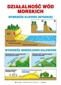 Działalność wód morskich School Notes, Self Improvement, Studying, Montessori, Homeschooling, Psychology, Infographic, Flora, Knowledge