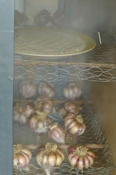 Bradley Smoker, Green Eggs, Barbecue, Onion, The Cure, Garlic, Homemade, Smoking, Vegetables