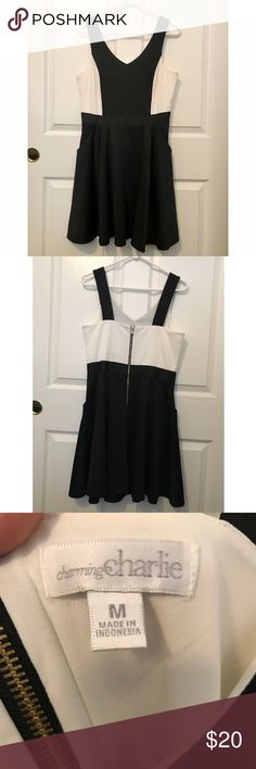 Charming Charlie black and white block dress Only wore this dress once for an anniversary dinner, it's much too pretty to sit in my closet. The design is super flattering and it has pockets which makes it functional as well. Charming Charlie Dresses