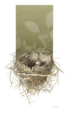 Bird Nests - The Art of Steve Morris Collages, Collage Art, Watercolor Sketch, Vintage Birds, Leaf Art, Bird Art, Painting Inspiration, Steve Morris, Art Images