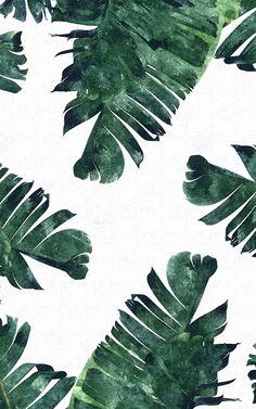 Banana Leaf Watercolor Canvas Artwork by 83 Oranges Watercolor Canvas, Watercolor Leaves, Watercolor Pattern, Watercolor Paintings, Canvas Artwork, Canvas Prints, Art Prints, Leaves Wallpaper Iphone, Plant Wallpaper