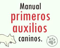 Facebook, Pets, First Aid, Planners, Manualidades, Tips, Animales