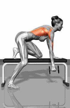 史上最全最標準的健身動態圖大全