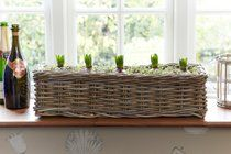 Long Wicker Planter by DesResDesign