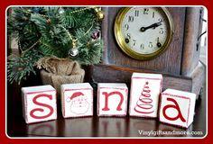 Adorable Santa Block Kit