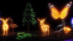 """Para tornar seu Natal ainda mais mágico, o """"Luminna Fest"""" vai te encantar com um espetáculo drive-in incrível, cheio de luzes e sons!"""