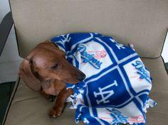 """Dodgers"" doggie chewing blanket."