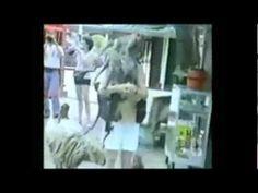 ¡EL MEJOR VIDEO DE ANIMALES CHISTOSOS!
