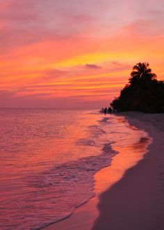 Maldives sunset - ©J Ford www.flickr.com/photos/fordyj/3430191337/in/pool-resorts_of_maldives/