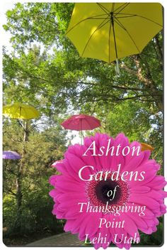 Ashton Gardens is over 50 acres of lush gardens with a surprise down every path!
