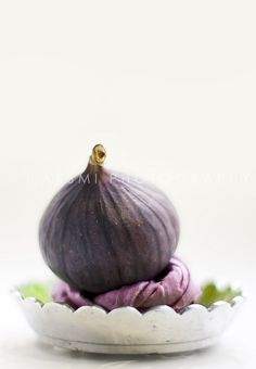 fig...