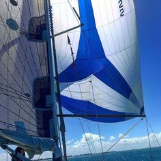 Spinnaker training on the good ship Painkiller OP today in 25knots :)  #sailing #sailboat #bavariayachts #spinnaker #instasail #training #sailporn #water #broadwater #surfersparadise #Queensland #australia #painkiller #racing #crew #syc #yacht by svbellamy