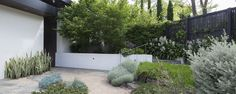 'Number 2' Toorak | GROUNDED GARDENS