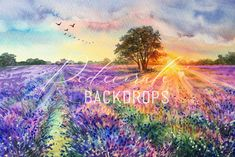 Lavander, Backdrops, Boutique, Mountains, Sunset, Nature, Red, Painting, Travel