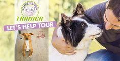 Lunedì prossimo, 14/11, il Trainer Let's Help Tour - giro d'Italia solidale per i #QuattroZampe - farà tappa nel nostro #Rifugio: ogni giornata del Tour corrisponde a una #donazione e al racconto della realtà del #canile o gattile. Vuoi venire a trovarci? Scopri di più 👉 http://bit.ly/2fkkX5v. Ti aspettiamo! #LAquila #LegadelCane #adozioni #randagi #TrainerNovafoods