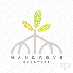 mangrove, forest, back water, leaf, jungle, shelter, homes, residence, tree, green, family,