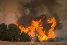1 out of 3 Homes have High Risk of Wildfires According to U.S. Forest Service http://www.realtytoday.com/articles/35805/20150916/california-real-estate-update-one-out-three-homes-high-risk.htm?utm_content=buffer2f71e&utm_medium=social&utm_source=pinterest.com&utm_campaign=buffer #CA #RealEstate