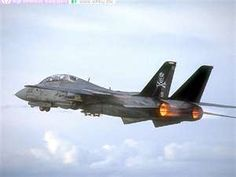 "A U.S. Navy Grumman F-14 Tomcat of the VF-84 squadron, nicknamed ""The Jolly Rogers""."