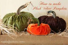 How to make Plush Velvet Pumpkins.  Full tutorial + a video!  via Nest of Posies