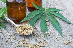 In the last few years, CBD has had a massive rise in popularity. Today, a wide range of CBD products are available online and in drug stores. Many people report great experiences with CBD, but it's always important to make an informed purchase. If you're curious about CBD oil, you should understand what CBD is, […] The post CBD Oil 101: Everything You Need to Know About CBD Oil appeared first on Tech Geeked.