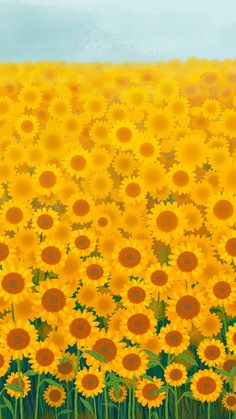 Download premium image of Sunflower garden background mobile phone wallpaper by marinemynt about sunflower, story, yellow flower background, spring, and Flowers wallpaper 2043968
