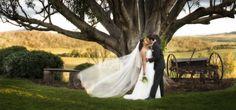 Weddings - Rstudios