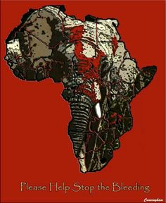 Although poaching is illegal, not all ivory trade is. If found, tusks are seized but not trinkets and jewelry made from ivory. And once ivory makes it to Asia, there is very little done to punish poachers. Elephant Love, Elephant Art, African Elephant, Dog Abuse, Ivory Trade, Baby Rhino, Save Wildlife, Elephant Sanctuary, Save The Elephants