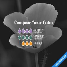 Compose Your Calm - Essential Oil Diffuser Blend