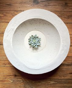 concrete bowl - I think these would be fabulous in the garden