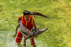 Man vs Crocodile, by Daniel Klovning on Behance