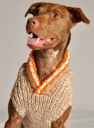 Tan Camp Wool Dog Sweater-the neckline would work great for Sophie's wide neck. :)