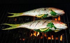 #COOKING - Grilling Whole Fish