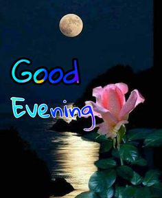 Good Evening Images Pictures Pics Wallpaper In HD Good Evening Messages, Good Evening Greetings, Good Evening Wishes, Purple Butterfly Wallpaper, Birthday Wishes With Name, Evening Pictures, Tagalog Love Quotes, Evening Quotes, Friends Image