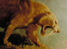 The original logo of the Museum of Science was a saber tooth tiger's head.  Immediately outside the entranceway to the building was a huge effigy of the animal.  I was fascinated by it as a child. Unfortunately, I am unable to locate any images of the figure.