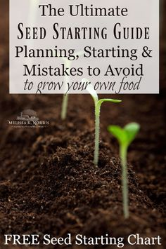 The Ultimate Seed Starting Guide- Planning, Starting & Mistakes to Avoid – Melissa K. Norris