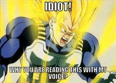 Vegeta! Dragon BallZ! I was totally reading this with his voice!! XD God I love him.