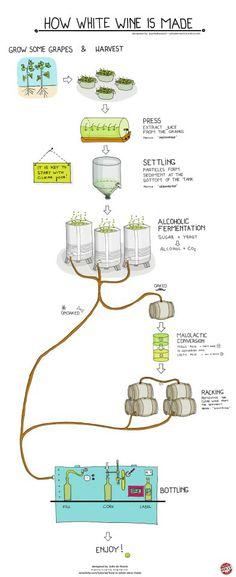 "White #wine #infographic www.LiquorList.com ""The Marketplace for Adults with Taste!"" @LiquorListcom   #LiquorList.com"