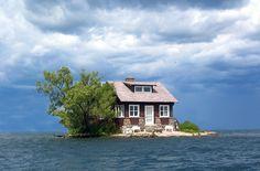 Roshi's Island.