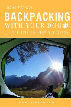 Interested in going hiking or backpacking with your dog? Then THIS is your resource guide to going camping with you pup and how to enjoy your bonding adventure safely!