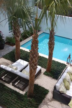Got a small backyard? Make a small pool that fits the size and dimensions of your backyard and cool. Small Backyard Design, Small Pools, Swimming Pools Backyard, Small Backyard Landscaping, Garden Design, Backyard Designs, Backyard Trees, Cozy Backyard, Backyard Beach