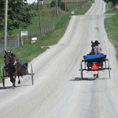 Amish in Berne Indiana