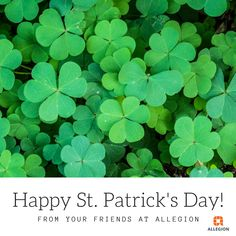 Have a safe and happy St. Patrick's Day from your friends at Schlage! Happy St Patricks Day, Safety And Security, Herbs, Friends, Canada, Instagram, Amigos, Herb, Boyfriends