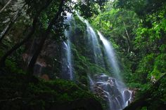 Kooi Waterfall, Royal Belum National Park, Perak