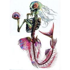 Mermaid Skeleton Print This is a print of an original drawing created using colouring pencil and ink. The image measures approx. 8 x 10 The image Mermaid Skeleton, Skeleton Art, Mermaid Zombie, Halloween Mermaid, Skeleton Tattoos, Skeleton Bones, Human Skeleton, Totenkopf Tattoos, Mermaid Art
