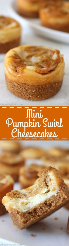 Mini Pumpkin Swirl C