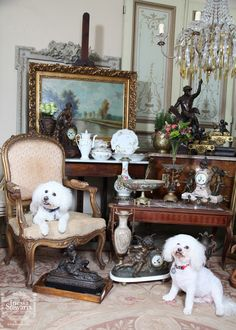 Louis and Zoie enjoying our antique new arrivals at the Baton Rouge store.